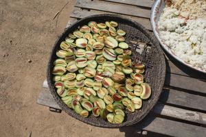 Step 1 of cutting Sandan to make it dried under the sunlight.JPG
